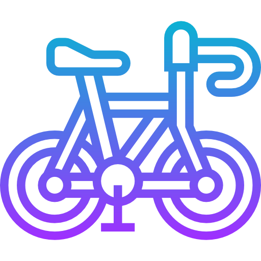Non electric bicycles